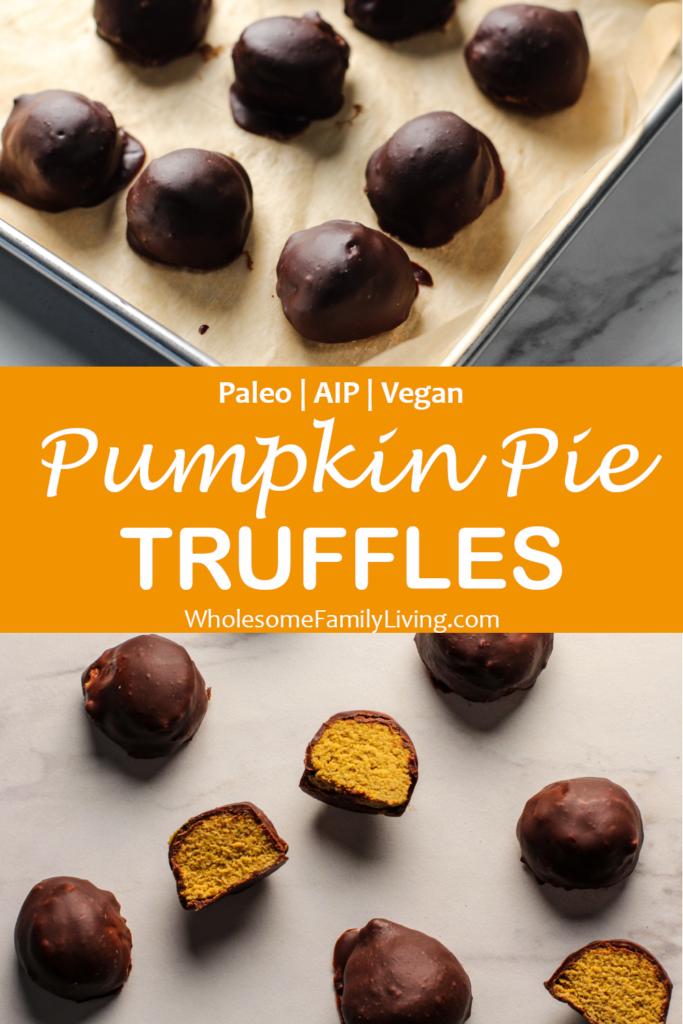 pumpkin pie truffle pin