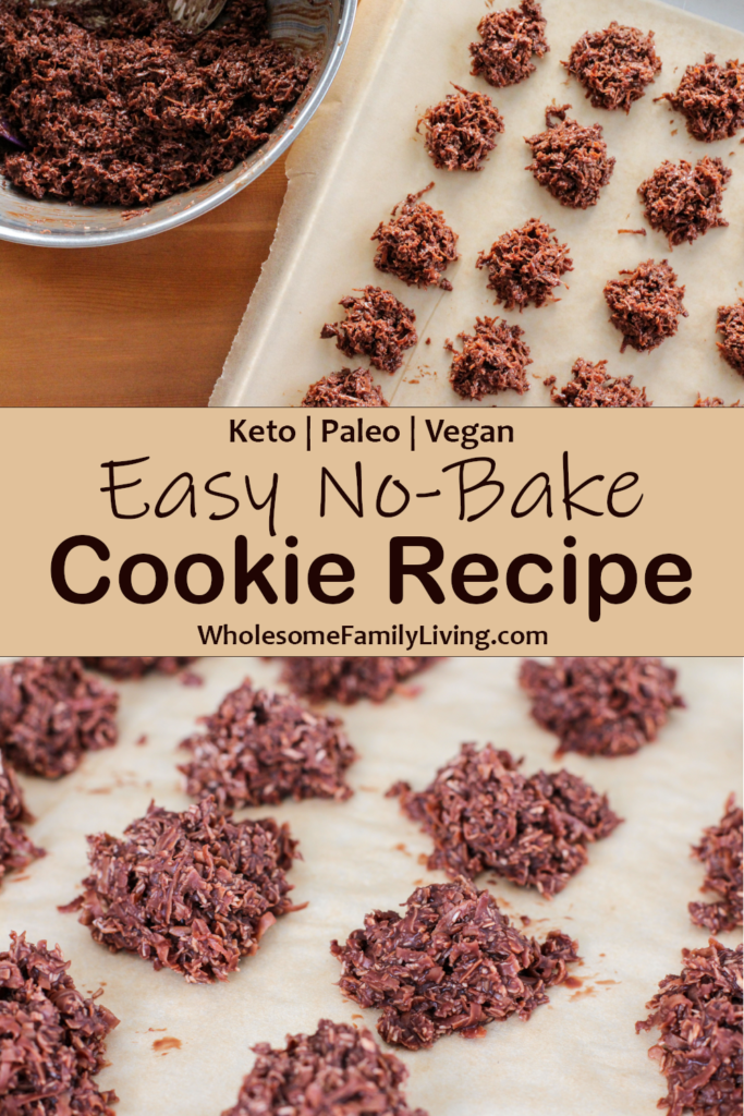 Easy No-Bake Cookies Recipe pine