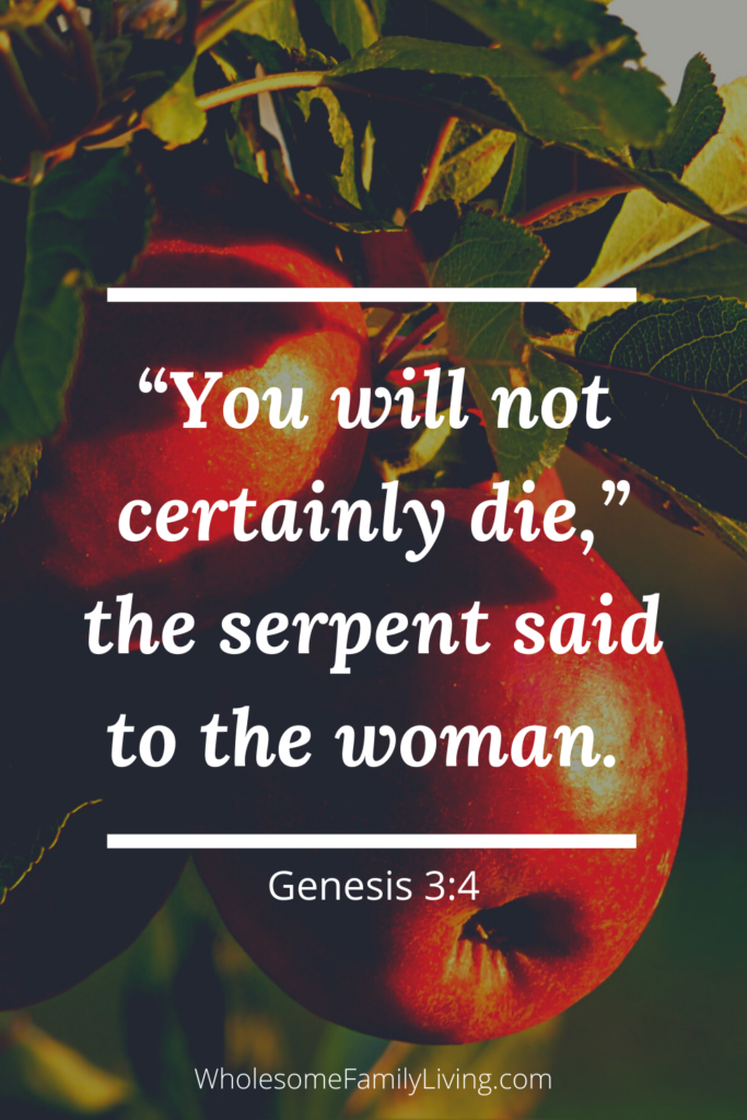 Genesis 3:4 with apples in the background