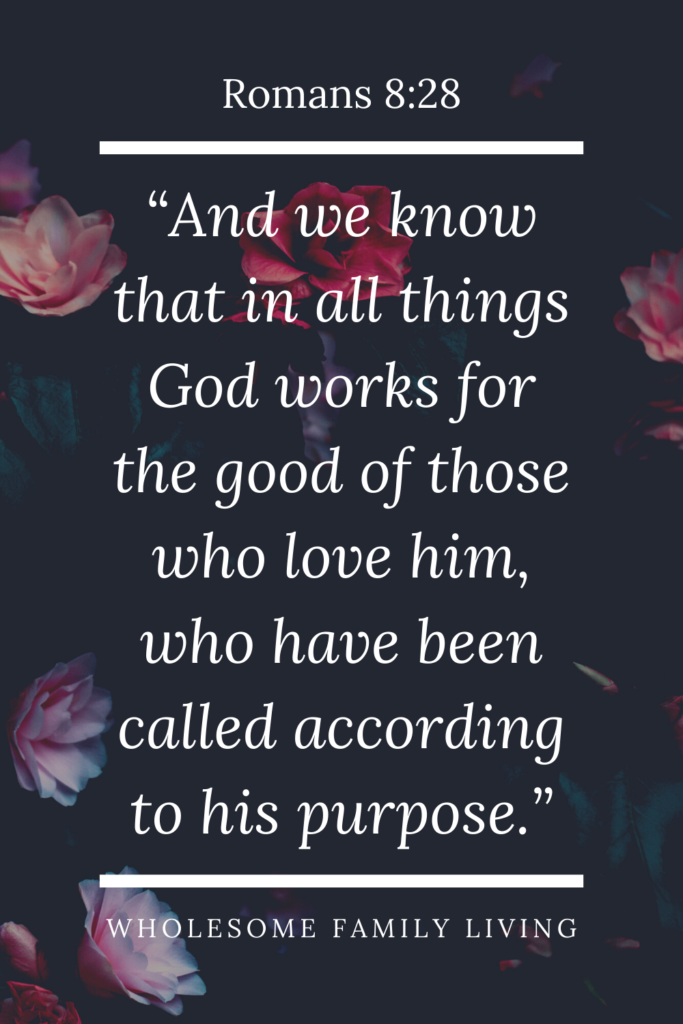 romans 8:28 explains why bad things happen to good people